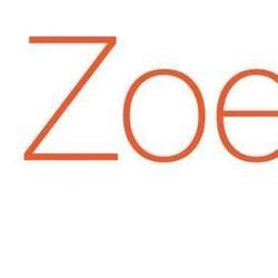 ZoeStylez Hair Authority, 80 E. Pershing, 303, Chicago, 60653