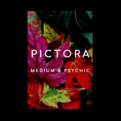 Pictora Mediumship  - Psychic Medium, Online, Los Angeles, 90012