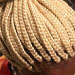 Alquisha's Braided Tresses