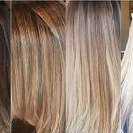 Shear Addiction Barbershop & Hair Studio