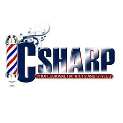 CSharp Professional Haircuts and Styles, 294 E. U.S. Hwy 20, Michigan City, IN, 46360