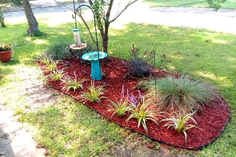 D&W Lawn service And Landscaping