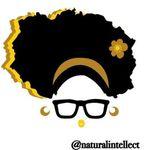 Natural Intellect Hair Care
