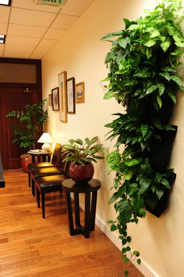 Anchor Acupuncture & Wellness